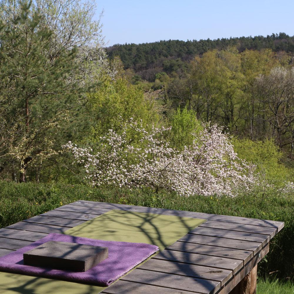 Landschaft Yoga Sarah Kindermann